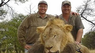 Cecil the Lion: Zimbabwe calls for extradition of killer US dentist