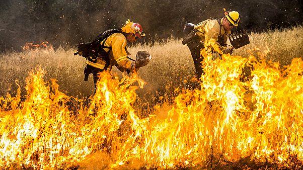 کالیفرنیا همچنان در آتش می سوزد