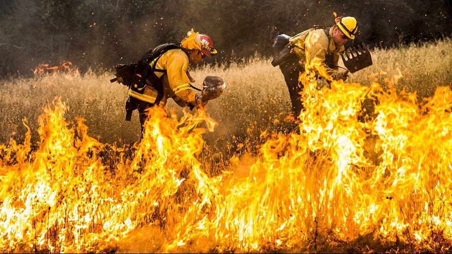 Kaliforniya'da son yılların en büyük yangını