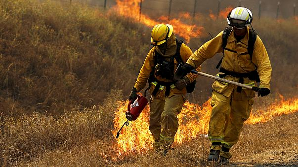 Gyorsan terjedő bozóttűz pusztít Kaliforniában