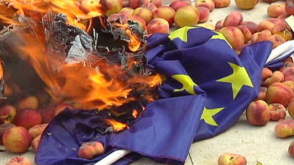 Balance negativo para agricultores rusos y europeos, al año del embargo