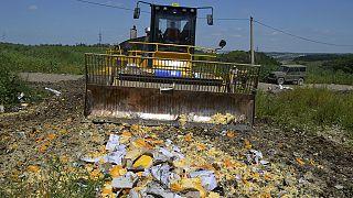 Indignación en Rusia por la destrucción de alimentos occidentales