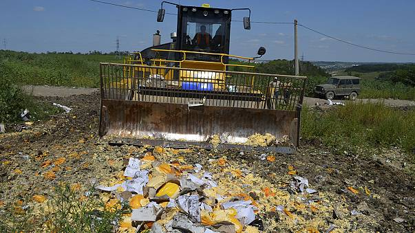 Russia destroys tonnes of illegal food imports at its border