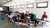 Alemanha tenta travar fluxo de migrantes dos Balcãs