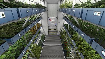 ISS astronauts poised to eat lettuce grown in space
