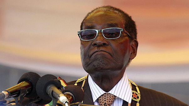 """Löwe Cecil: Simbabwes Präsident Mugabe spricht von """"Vandalen"""""""