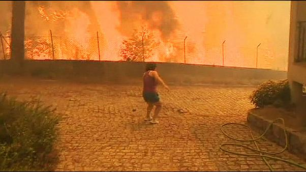 Heatwave fuels forest fires in Portugal
