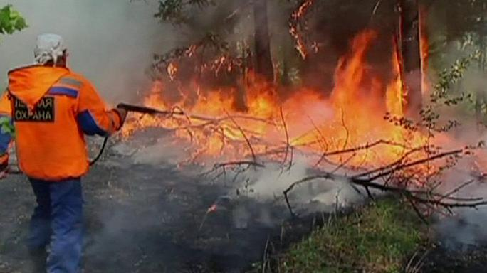 النيران تلتهم عشرات آلاف الهكتارات من الغابات في سيبيريا