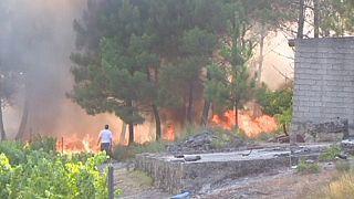 حرائق الغابات تهدد المناطق السكنية في البرتغال وإسبانيا