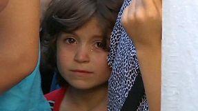 Imigrantes clandestinos desesperam na Grécia