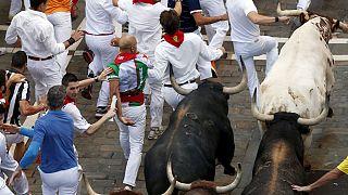 Испания: опасные забавы с быками