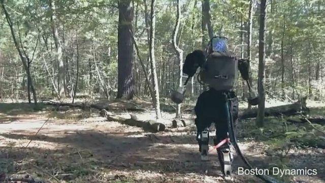 Erdőben sétált Atlas, az emberszerű robot