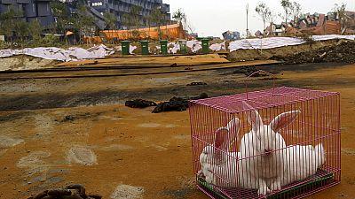 El gobierno chino dice tener controlada la contaminación de Tianjin
