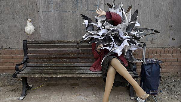 بنکسی، هنرمند بریتانیایی پارک «دیسمالند» را افتتاح کرد