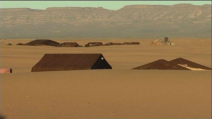 التغير المناخي يهدد واحات جنوب المغرب