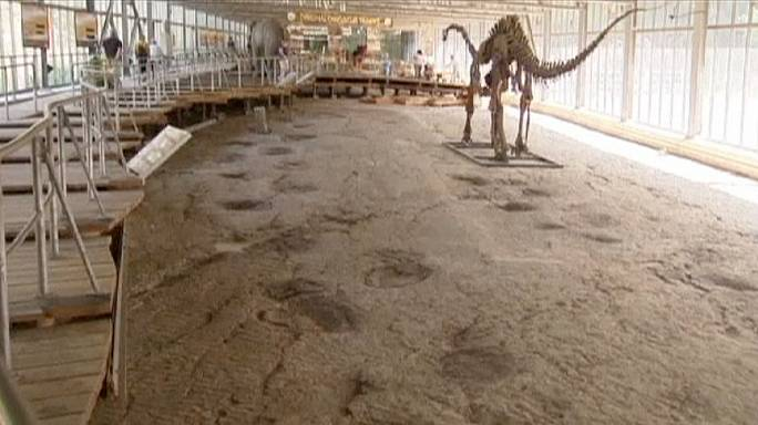 Dinosaur footprints found in abandoned German quarry