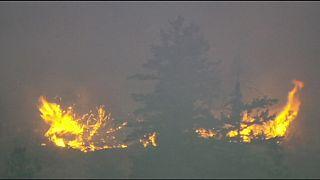 L'Etat de Washington fait face aux plus importants feux de forêt de son histoire