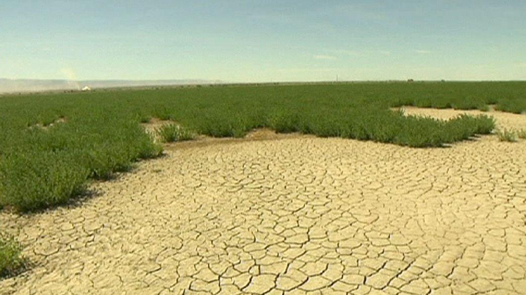 Studie zeigt: In diesen Ländern wird das Wasser knapp