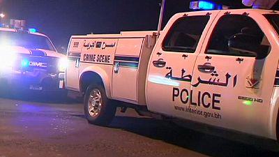 Bahrain policeman killed in 'terrorist' blast