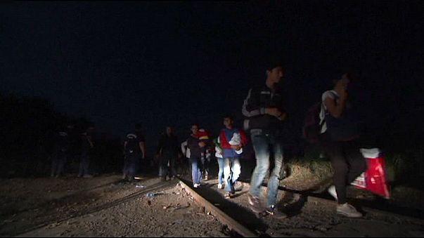 Röszke: a bolgár rendőrség is akcióba lépett a magyar határon