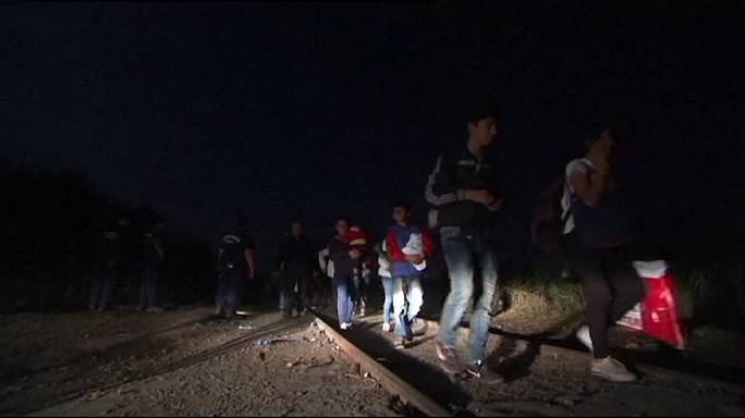 المجر تُعزز حدودها مع صربيا بسياج حدودي شائك للحد من تدفق المهاجرين غير الشرعيين