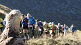 Ultra-Trail du Mont-Blanc gets eagle's eye view