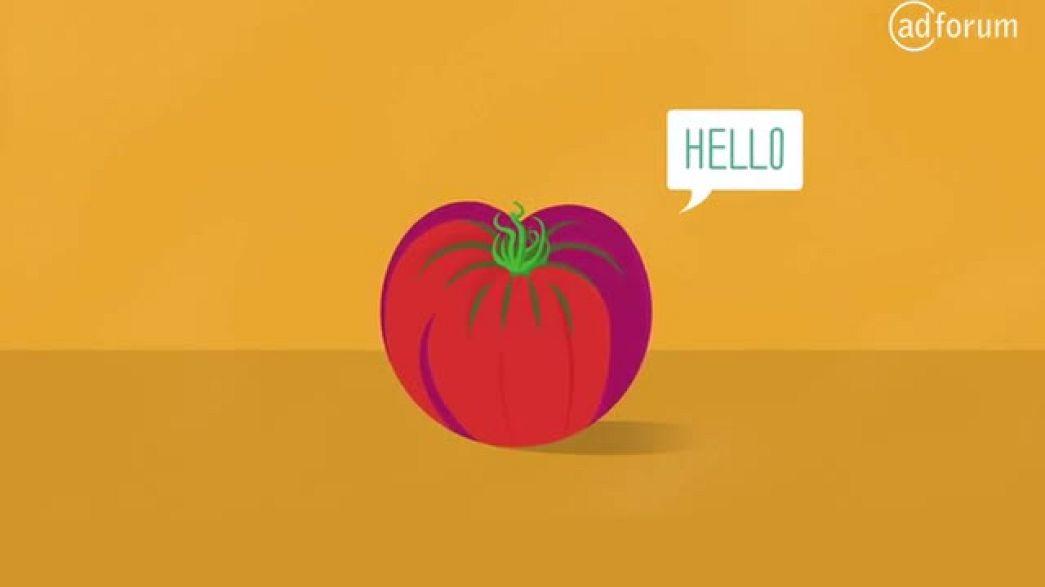 Cherokee Purple Tomato (Seeds of Change)