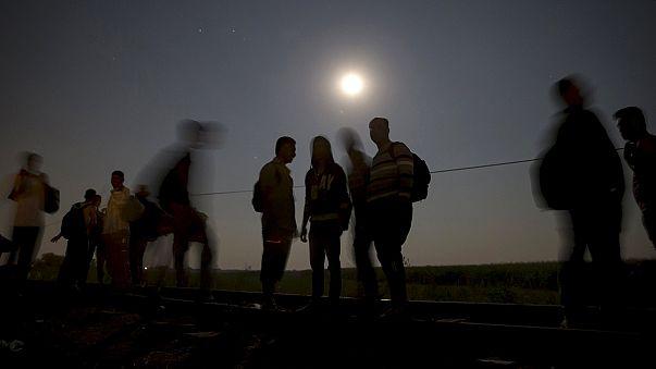 Avusturya'da 24 Afgan mülteci kurtarıldı