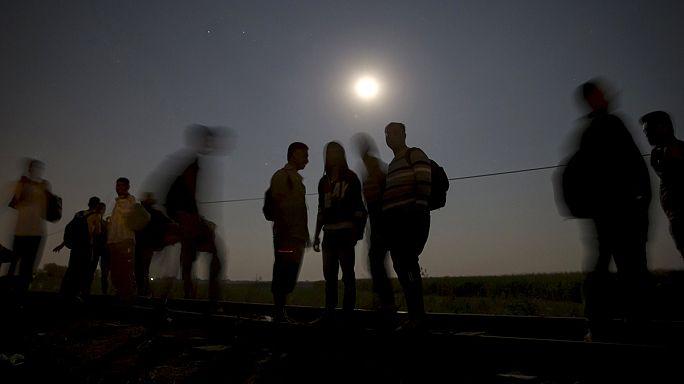 В грузовике на австрийско-венгерской границе обнаружены подростки из Афганистана