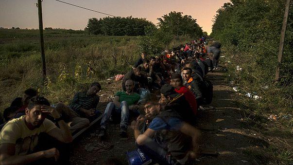 Göçmenlerin şafak vakti zorlu yolculuğu