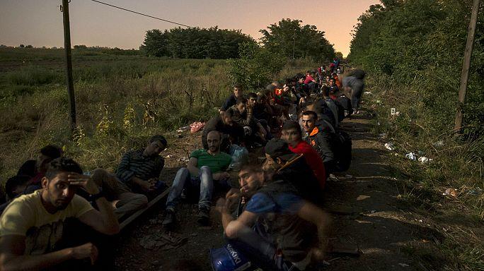 La noche, la mejor aliada para los refugiados que buscan entrar en Hungría