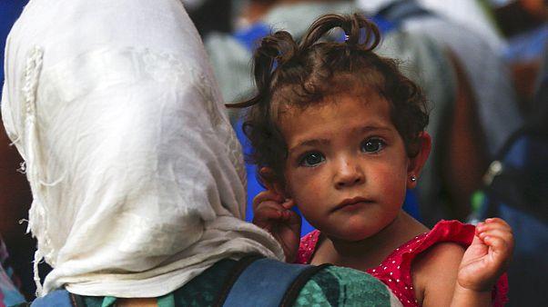 14 ezernél is több izlandi ajánlotta fel otthonát a szíriai menekülteknek