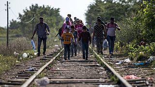 Business Line: Avrupa'da göçmen krizi