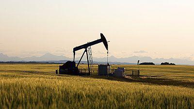 Petrolio, continua il trend altalenante. L'analista: probabile intervento Opec