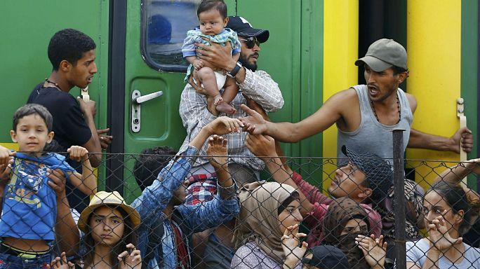 Кризис с беженцами в ЕС заставляет власти действовать