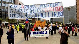 Frustrated farmers protest in Brussels over falling milk and meat prices