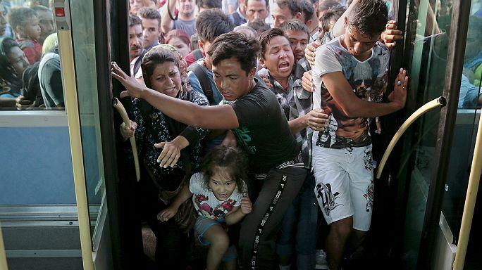 Binlerce mülteci Midilli'den tahliye ediliyor