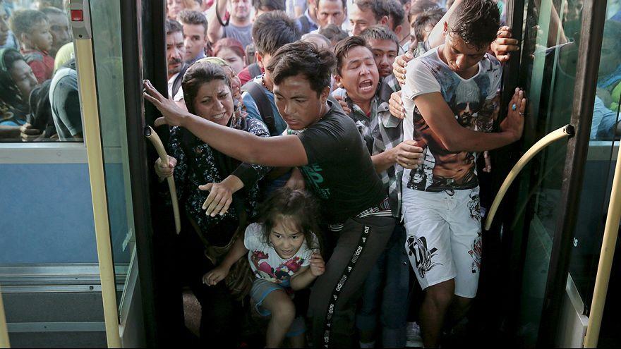 اليونان: جزيرة ليسبوس تعاني اكتظاظا بسبب اللاجئين