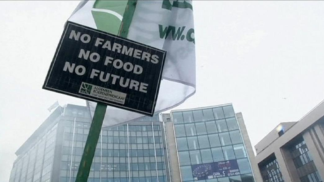 EU announces agricultural aid after farmers descend on Brussels