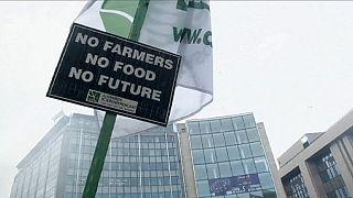 EU-Kommission sichert Bauern 500 Millionen Euro zu