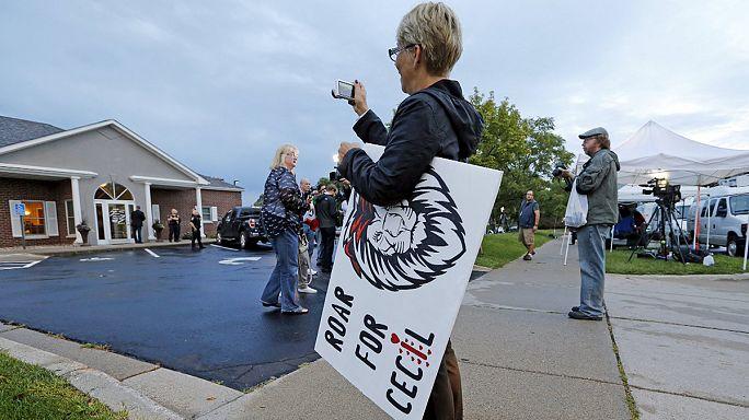 Tüntetők várták az oroszlánt ölő fogorvost