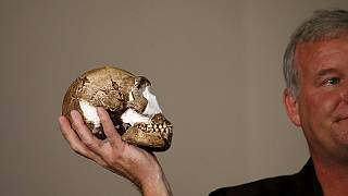 Un grupo de científicos sudafricanos presenta una nueva especie de homínido