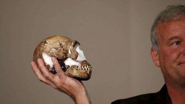 Südafrikanische Forscher entdecken neue Menschenart – Schweizer Forscher bezweifeln Entdeckung