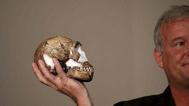 Új rokon a családfán: Homo Naledi