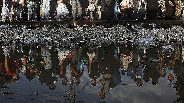O verdadeiro e o falso na crise dos migrantes