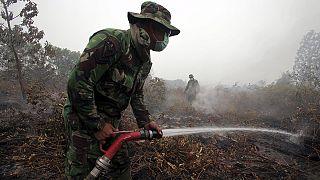 Sumatra Adası'ndaki yangınlar kontrol altına alınamıyor