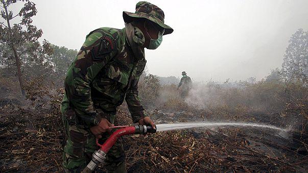 Индонезия: смог на Суматрой