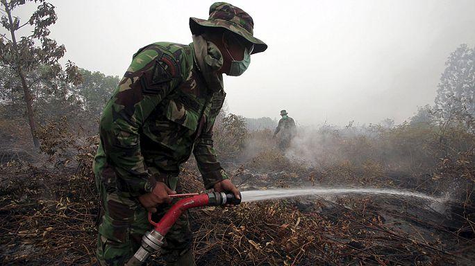 Feux de forêts indomptables en Indonésie