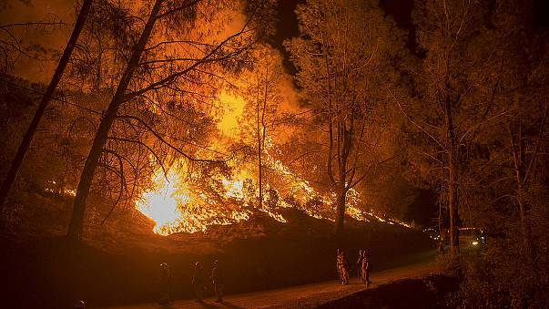 Thousands flee the flames as northern California battles wildfires