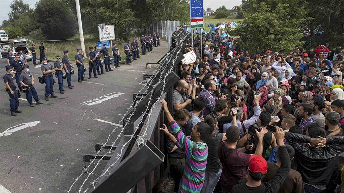 Европа теряет себя под наплывом беженцев?